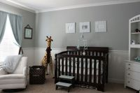 Gray/blue/brown baby boy nursery