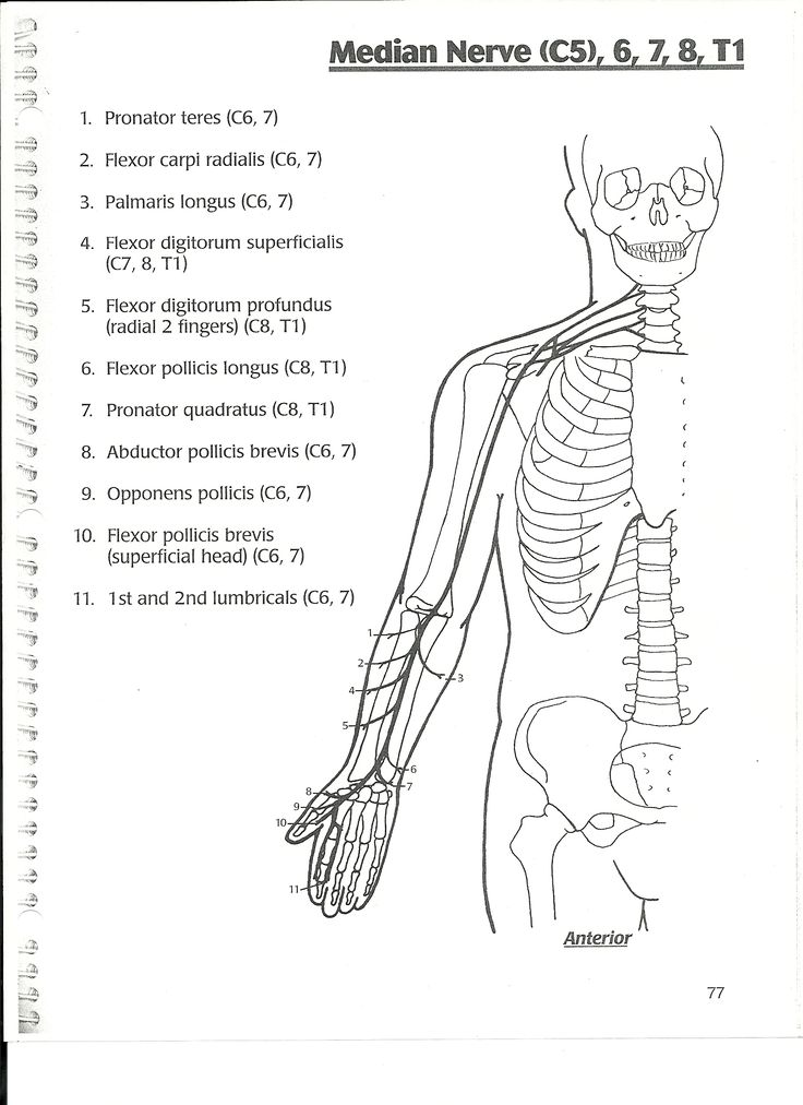 17 Best images about PT :: examination on Pinterest