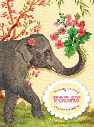 25 Best Ideas About Happy Birthday Elephant On Pinterest