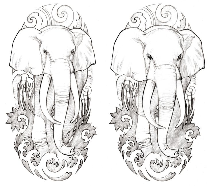 25 best images about elephant tattoo on Pinterest