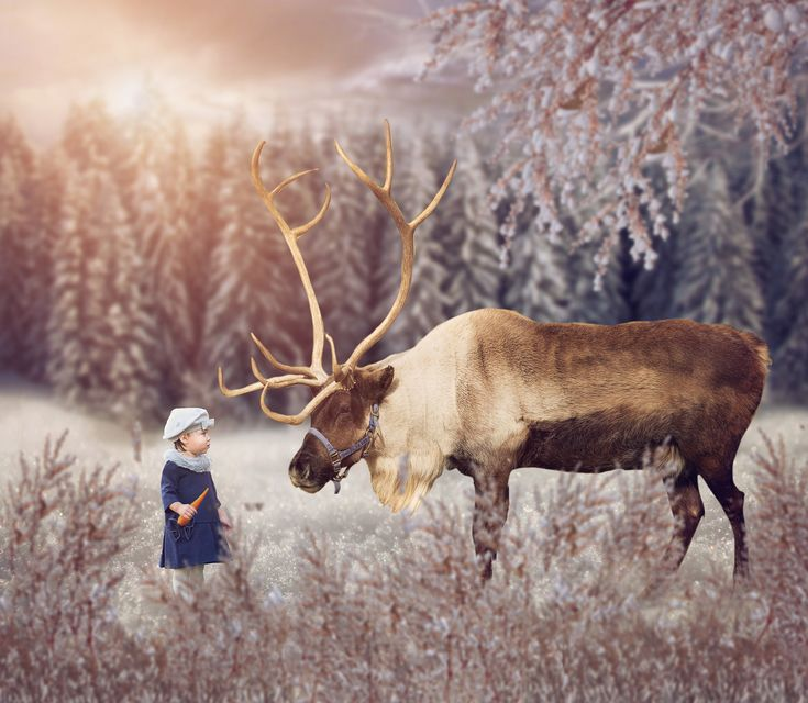 47 Best Images About Composite Photography On Pinterest