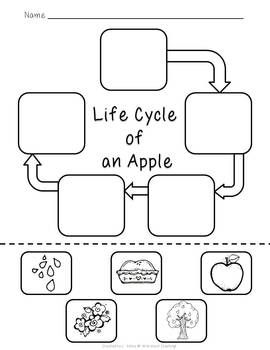 171 best images about apples/Johnny Appleseed on Pinterest