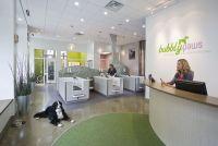 Imagine These: Retail Store Interior Design | Dog Spa ...