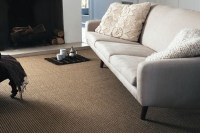 Wool Berber Carpet. Looks like a jute rug...like for