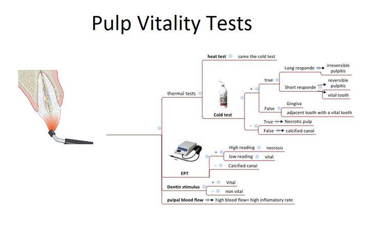 Pulp Vitality Tests Chart | Dental Education | Pinterest ...