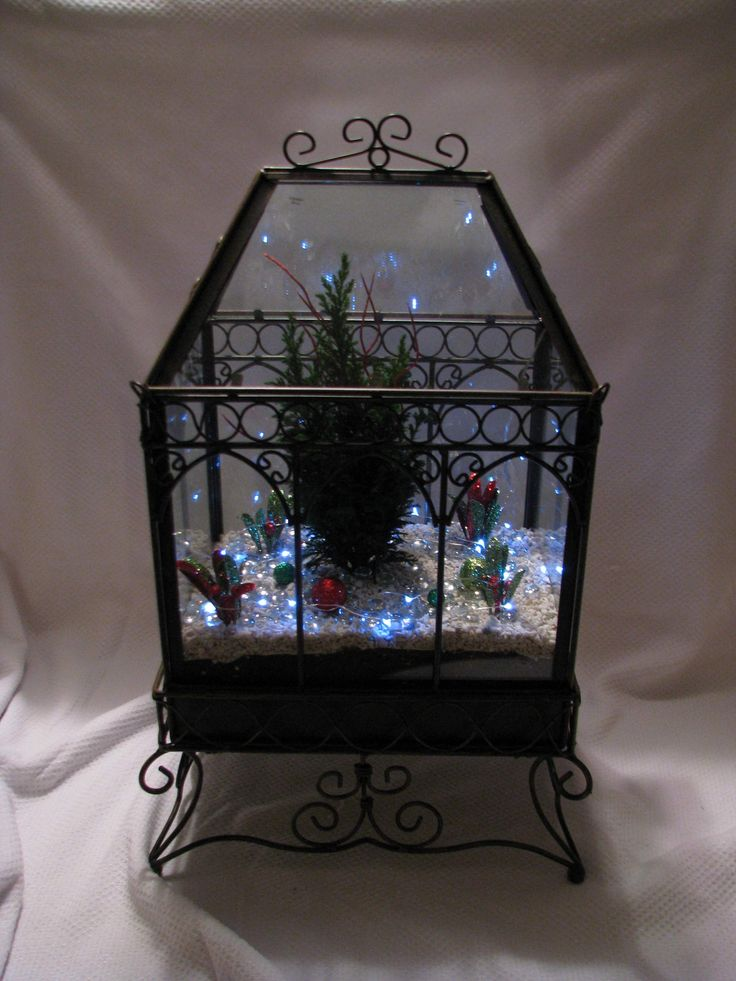 1000 Images About Christmas Terrariums On Pinterest