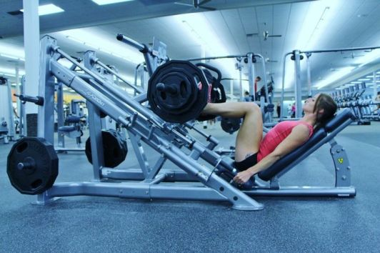 Image result for Leg press and where should it be in your training plan?