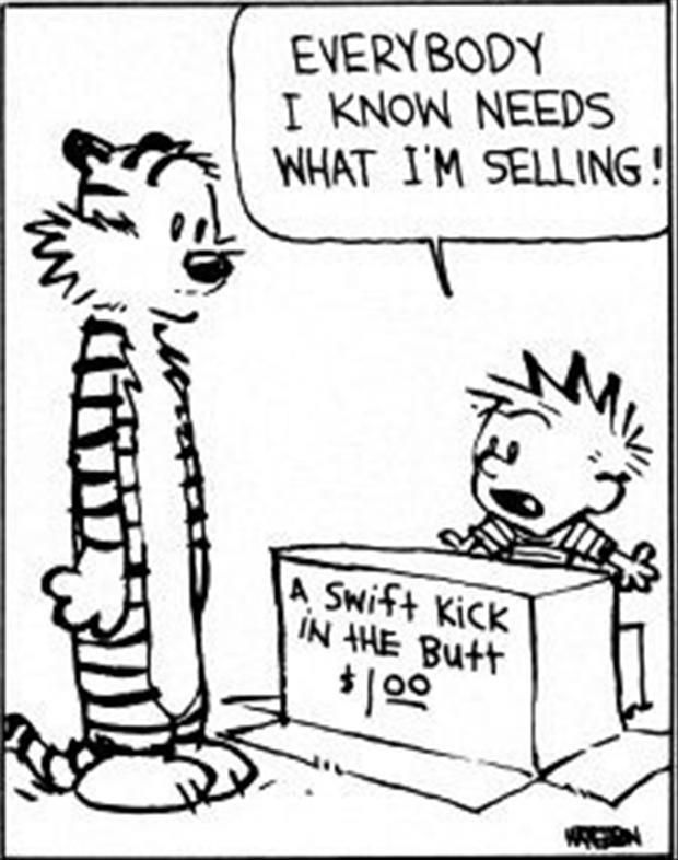 88 best Calvin and Hobbes images on Pinterest