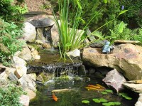 33 best images about Garden / Fish Ponds on Pinterest ...