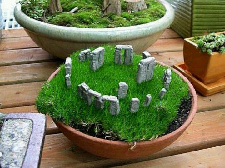 47 Best Images About Moss Dish Gardens On Pinterest Gardens