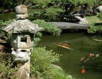 31 best images about koi pond on Pinterest | Decks ...