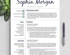 Professional Resume Template For Word 1 Amp 2 Page Von