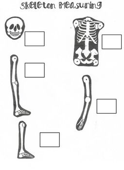 Skeletons, Literacy and Math on Pinterest