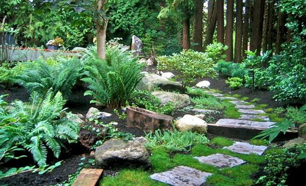 Natural Rock Garden Landscape Ideas Maybe Put A Path Like This