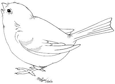 25+ best ideas about Bird Coloring Pages on Pinterest