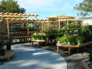 The 25 Best Garden Center Displays Ideas On Pinterest Retail