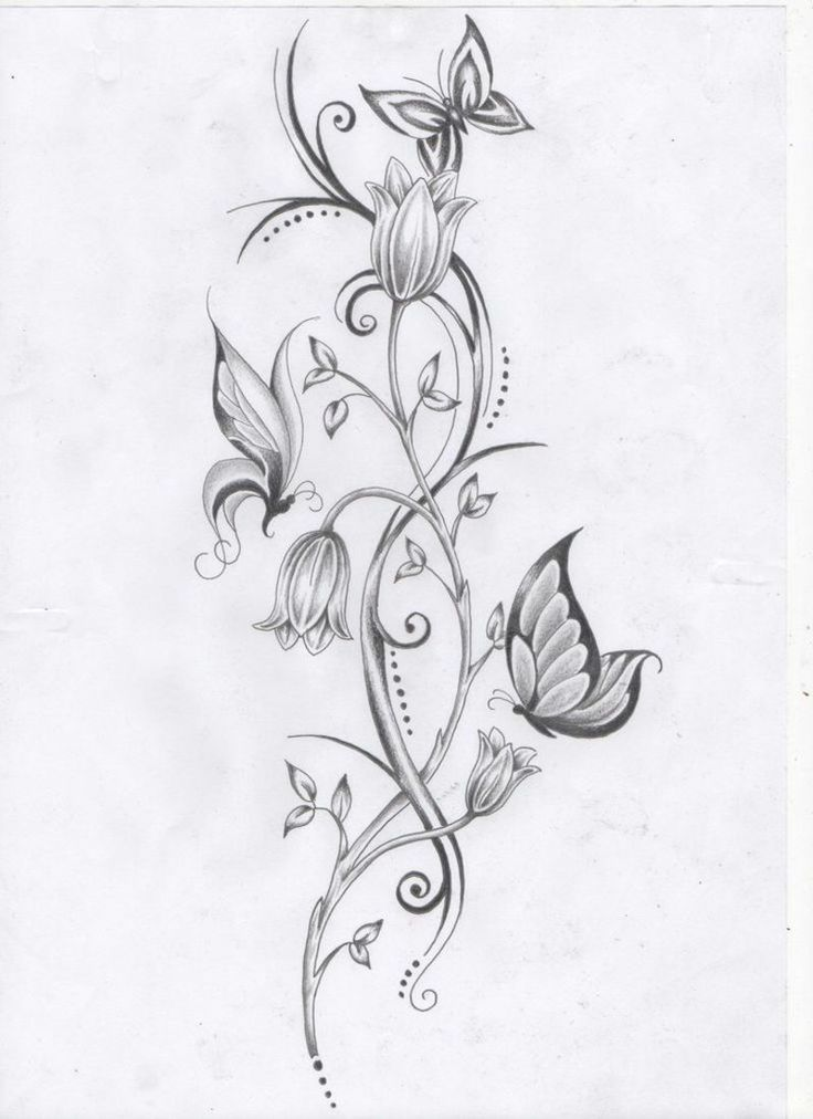 Malvorlage Schmetterling Blume