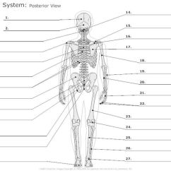 Facial Bones Diagram Not Labeled Switch Receptacle Combo Wiring Anatomy Labeling Worksheets - Google Search | I Heart Pinterest The O'jays ...