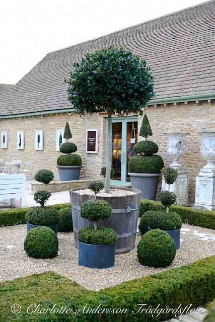 17 Best Images About Hedges & Topiary On Pinterest Gardens Maze