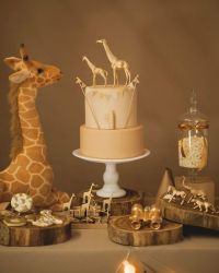 Giraffe Boy Baby Shower Decorations