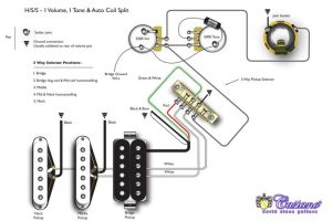 TheBlog: Humbucker HSS, HSH and Coil Tapping | guitar