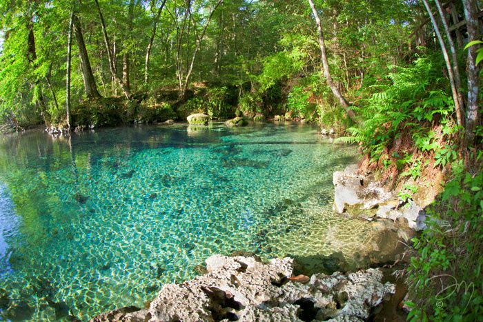 310 best images about Springs & Grottos on Pinterest