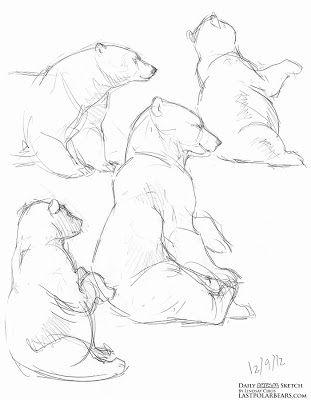 17 Best images about Polar Bear Pattern on Pinterest