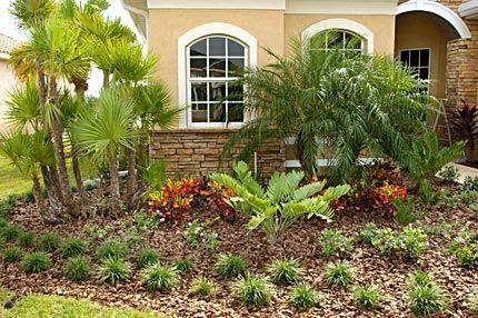 15 Must See Florida Gardening Pins Box Garden Organic Gardening 17