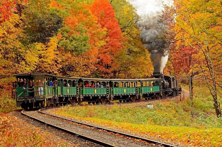 Cass Scenic RailroadOct 2014 by Steve ShalulaAOUWV