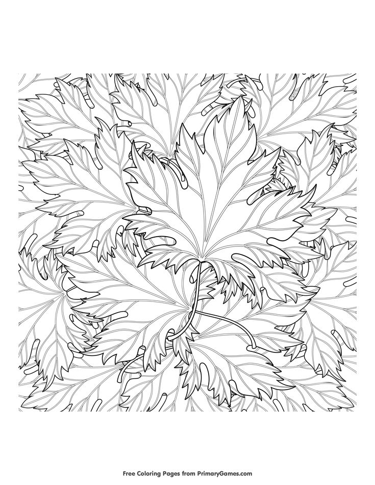 1000+ ideas about Fall Coloring Pages on Pinterest