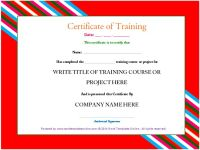 Professional Training Certificate template from word ...