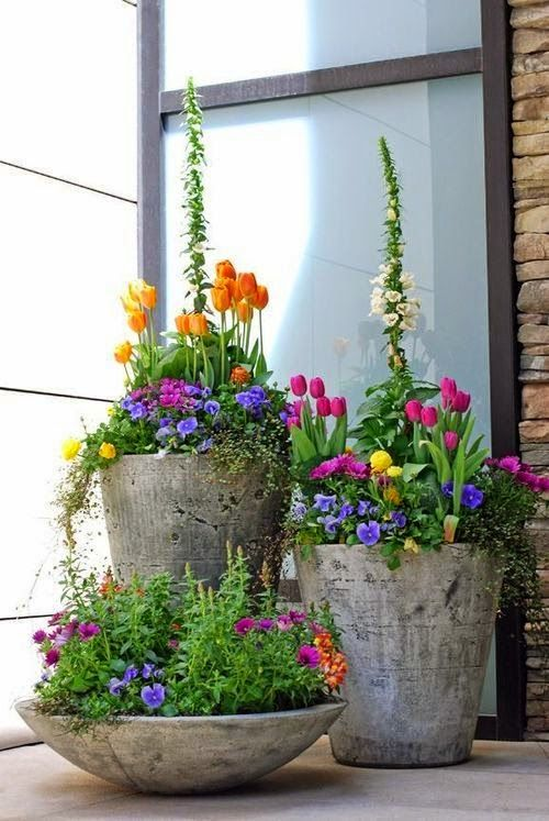 25 Best Ideas About Spring Garden On Pinterest Flowers Garden