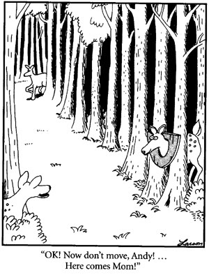17 Best images about The Far Side on Pinterest