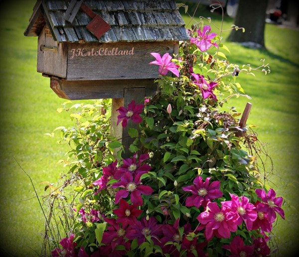 mailbox landscaping