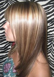 dark blonde base with high lites