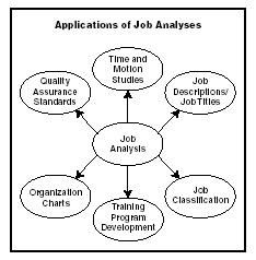 21 best images about Job Analysis on Pinterest