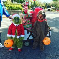 The Grinch and his dog Max, with a sleigh full of stolen ...