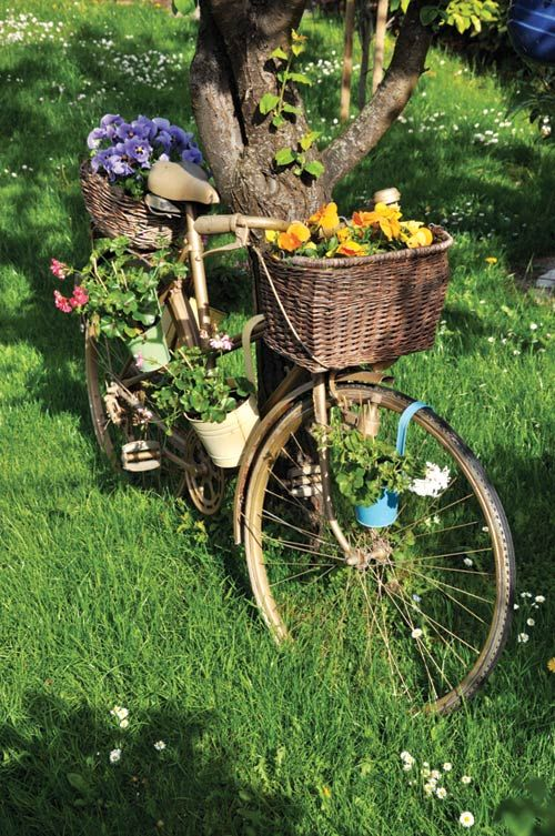 25 Best Ideas About Garden Makeover On Pinterest Rope Lighting