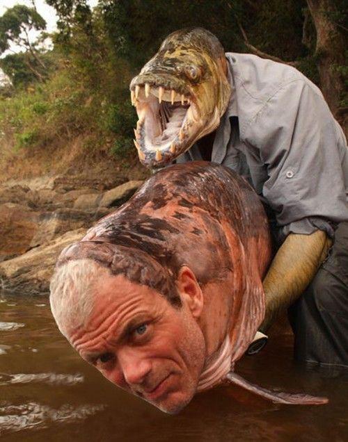 Vampire Fish River Monsters