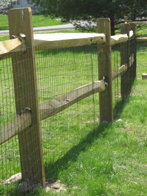 25 Best Ideas About Dog Fence On Pinterest Fence Ideas Wire