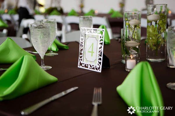Lime Green And Brown Party Decorations