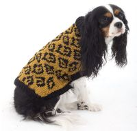 44 best images about Knitting Patterns for Dogs on ...