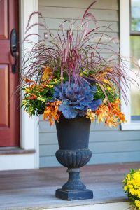 25+ best Fall Flower Pots ideas on Pinterest | Fall potted ...