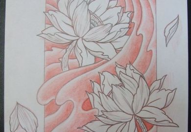Lotus Flower Drawings For Tattoos Pinterest