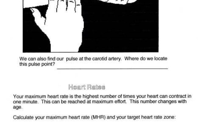 Heart Rate Chart For Teenagers Finding Your Target Heart