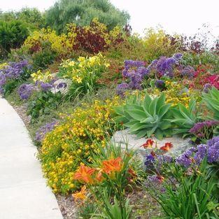 Drought Tolerant Garden Designs drought tolerant landscape garden landscapinglandscaping 25 Best Ideas About Drought Tolerant Garden On Pinterest