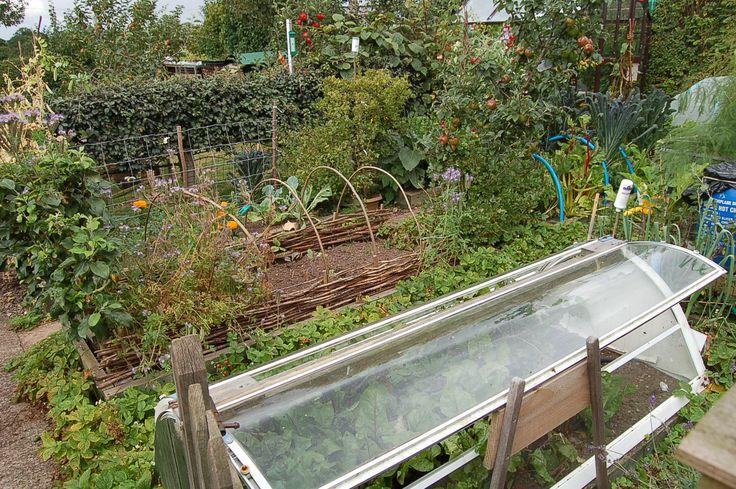 Permaculture Garden Ideas