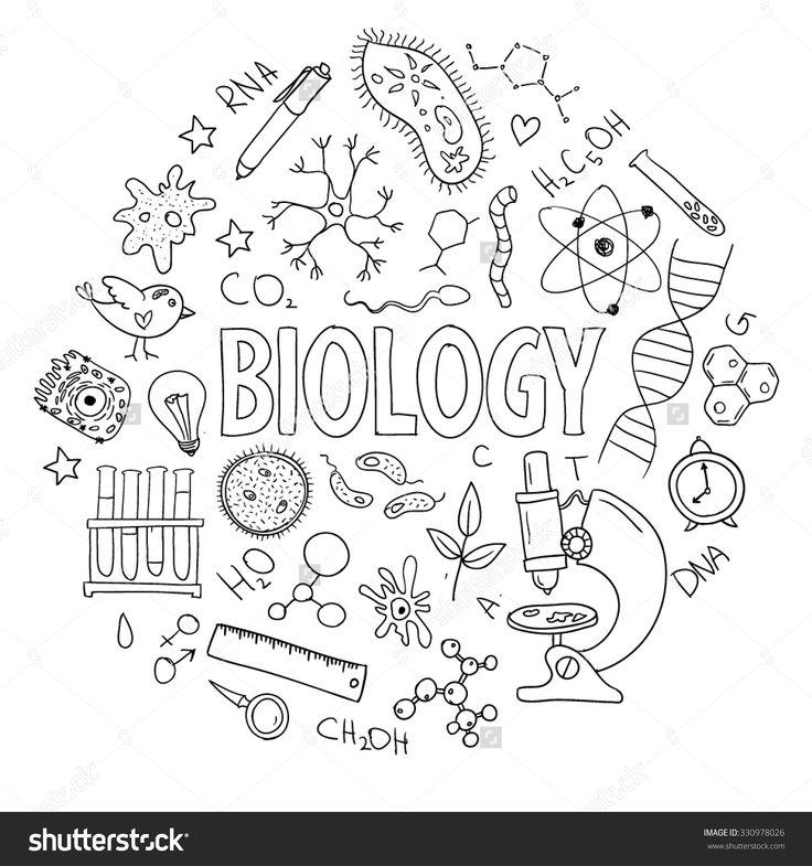 Best 25+ Science doodles ideas on Pinterest