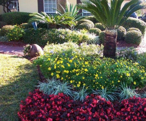 central florida landscape