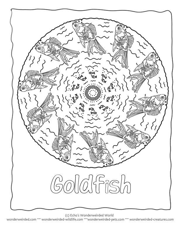 17 Best ideas about Rainbow Fish Template on Pinterest